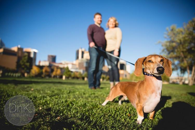 Louie the Wiener Dog