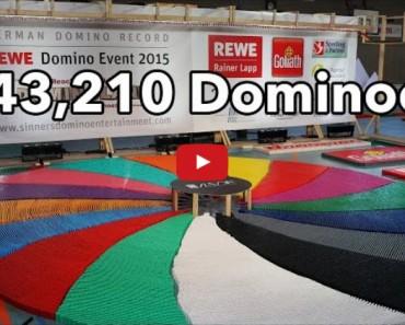 Watch a Half Million Dominoes Fall